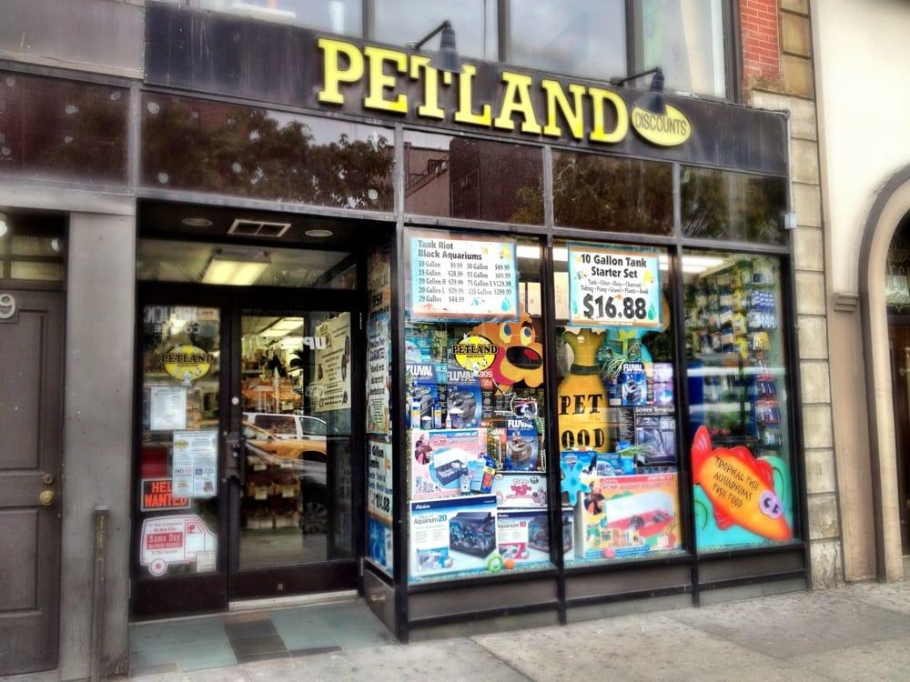 petland discounts   pet stores   new york ny united