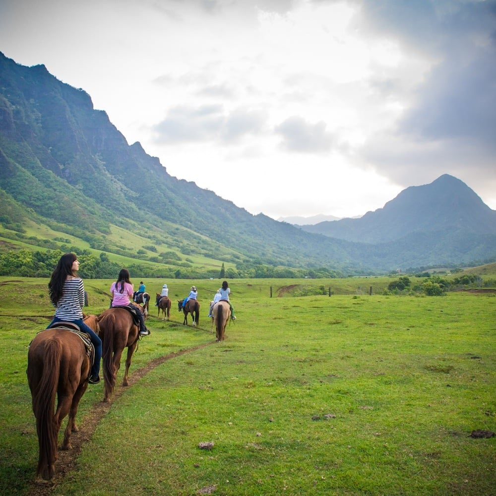 Kualoa ranch private nature reserve 1201 photos for Places to go horseback riding near me