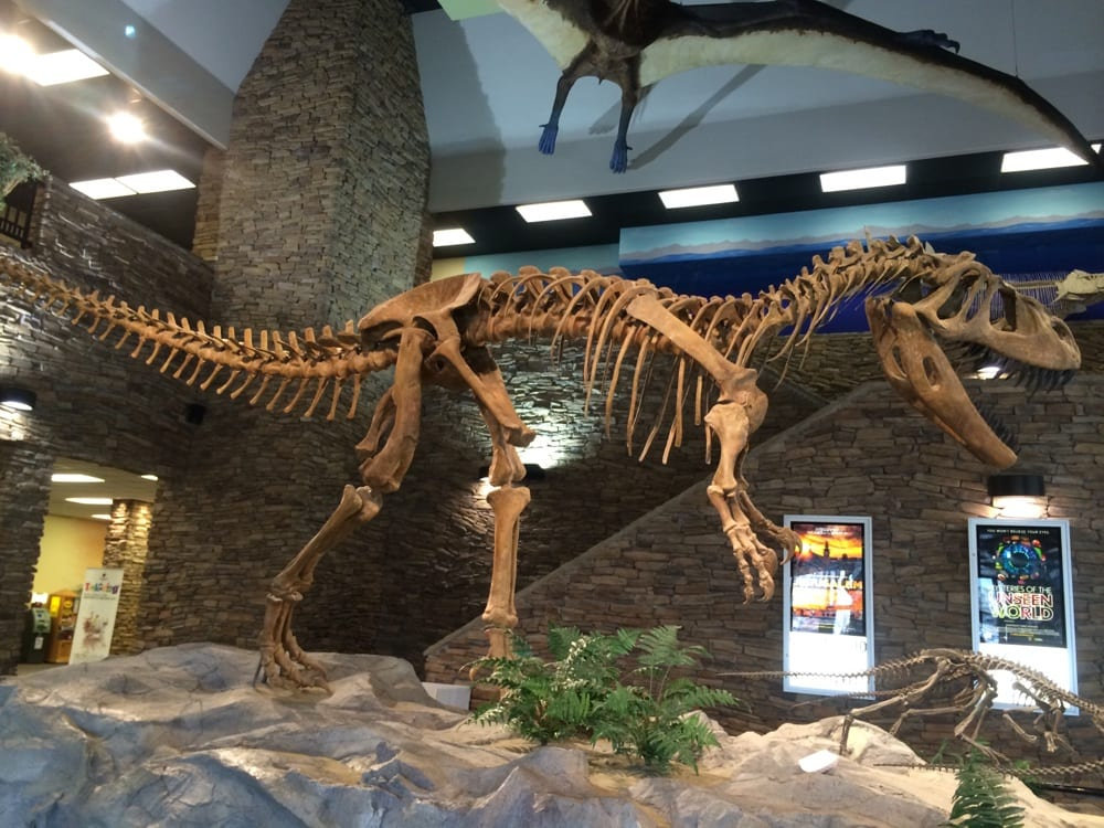 Lehi (UT) United States  City pictures : ... Life, Dinosaur Museum at Thanksgiving Point Lehi, UT, United States