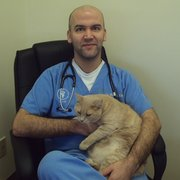 Midlands Veterinary Practice - Dr.Robert Cabe and our beloved clinic cat, Butters. - Columbia, SC, Vereinigte Staaten