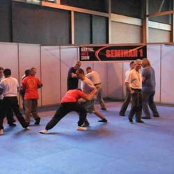 Shaolin Fists International--Hoan Lung Quan, Sheffield, South Yorkshire, UK