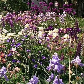 Schreiner S Iris Gardens 44 Photos Garden Centres