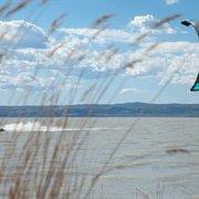Kitesufing bei blauem Himmel am Schilf…