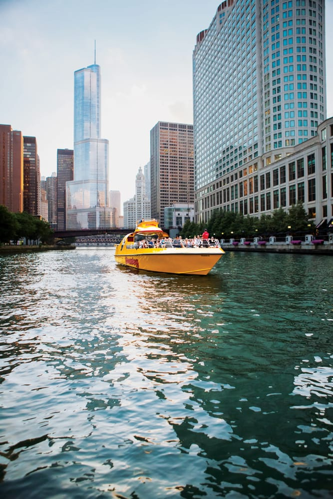 Seadog Chicago - Chicago, IL If you feel the need -- the need for speed -- then climb aboard the high-powered Seadog for a thrilling boat ride along Chicago's scenic lakefront, while your captain regales you with fun and fascinating facts about the metrnight.gqs:
