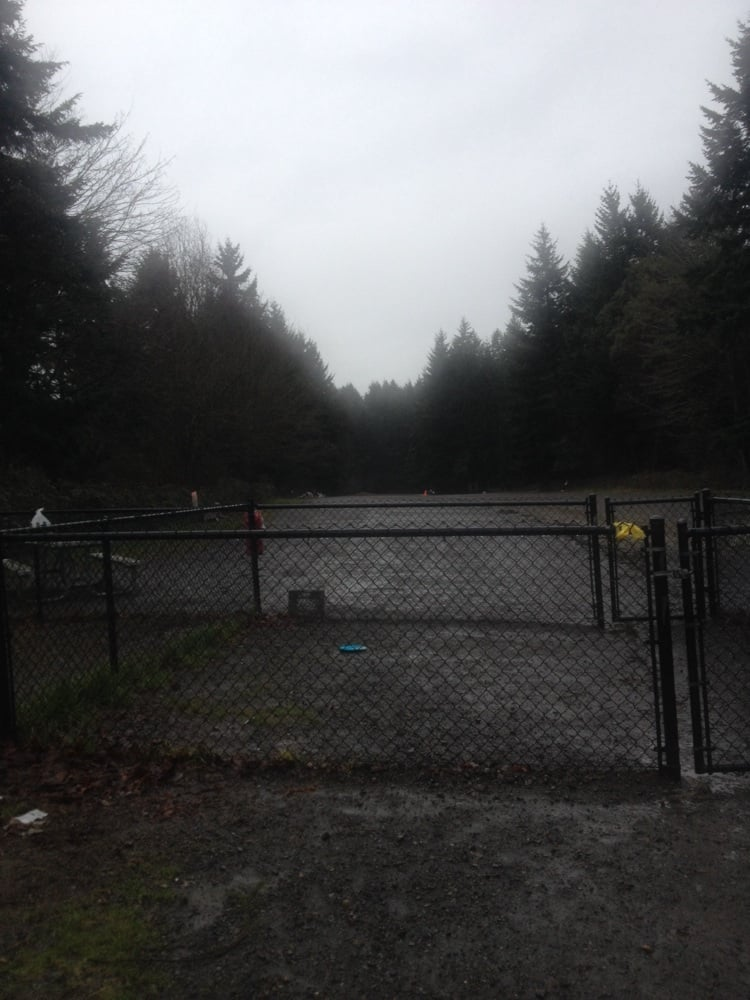 Newest Off Leash Dog Park In Seattle
