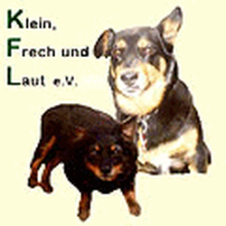 Klein Frech und Laut e. V., Berlin