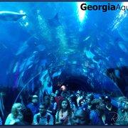 Georgia Aquarium 1695 Photos Aquariums Downtown