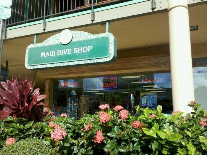 Maui dive shop geschlossen tauchen lahaina hi - Dive shops near me ...