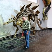 Stegosaurus with curious British visitor. 'I said, 'don't touch!'
