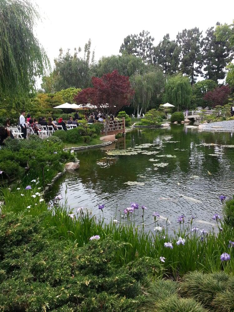 Earl burns miller japanese garden venues event spaces for Csulb japanese garden koi pond