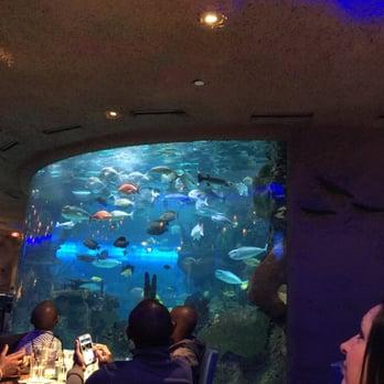 Aquarium Restaurant - 229 Photos - Seafood - Donelson ...