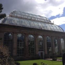 Beautiful big greenhouse!