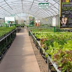 nick s garden center aurora colorado nick s garden center farm market 44 photos nurseries