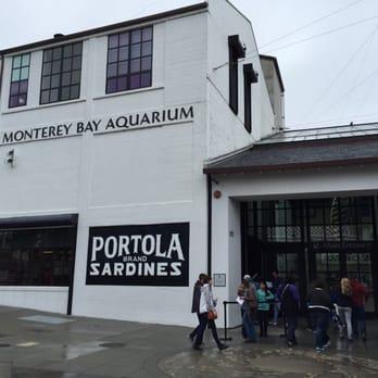Monterey Bay Aquarium - Monterey, CA, United States