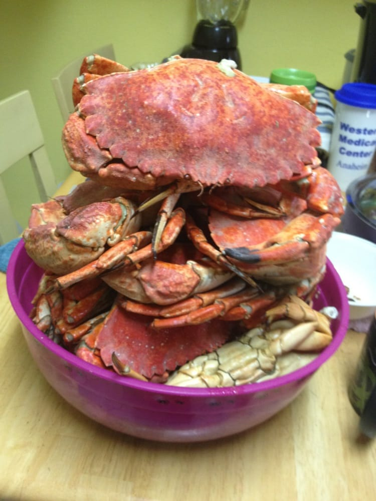 25 Worth Of Freshly Caught Crabs From Dory Fleet Cooked