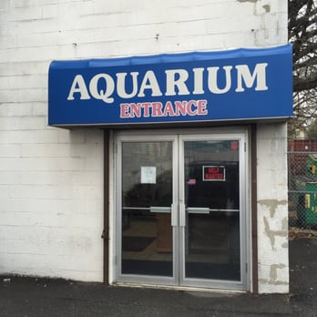 shark aquarium pet center closed pet stores 245