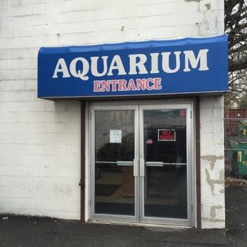 Shark Aquarium Pet Center Closed Pet Stores 245