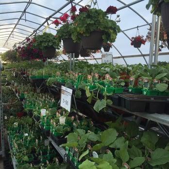 Stein S Garden Home Gardening Centres 3725 S 108th