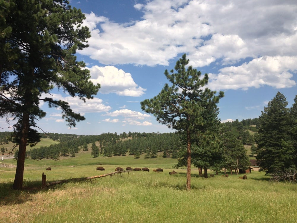 Golden (CO) United States  city pictures gallery : ... Campground Camping & Campsites Golden, CO, United States Yelp