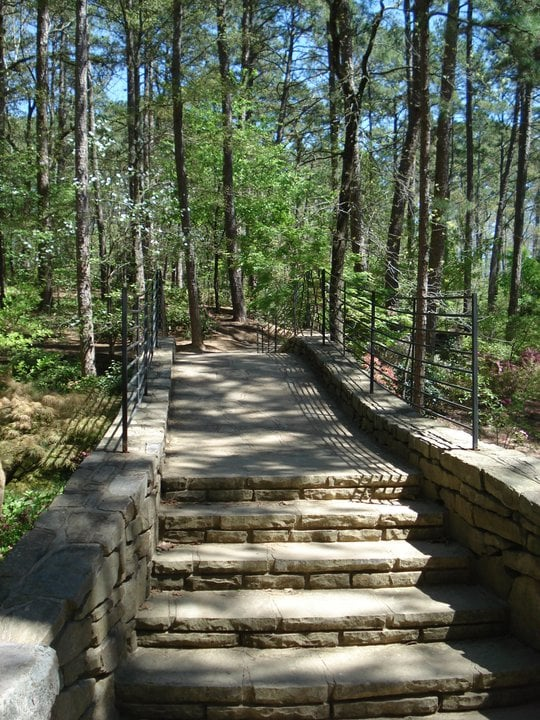 Garvan Woodland Gardens Wedding Planning Hot Springs