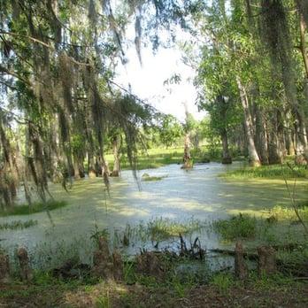 Magnolia Plantation Gardens Charleston Sc United States