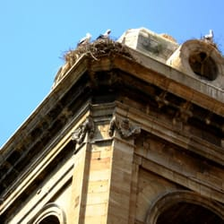Detail of tower (and nesting cranes)