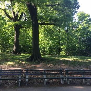 Mount Prospect Park Dog Run