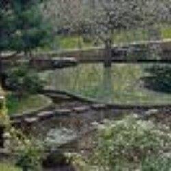 Jardin Japonais de Noguchi à l'Unesco - Paris, France. Le jardin japonais de l'Unesco