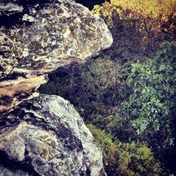 Oregon Il Castle Rock State Park Dog