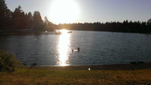Steel Lake Park : Steel lake park playgrounds federal way wa reviews