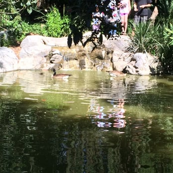 Los Angeles County Arboretum And Botanic Garden Arcadia Ca United States Yelp