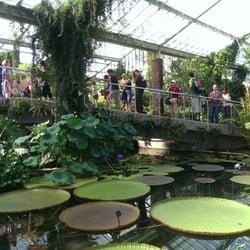 The Princess of Wales Conservatory…