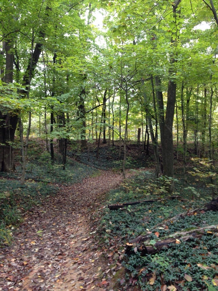 Jefferson Hills United States  City new picture : Jefferson Memorial Forest 23 Photos Parks Fairdale, KY, United ...