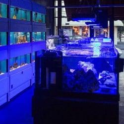 Scranton Aquarium Scranton Pa Yelp
