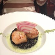 Scallops over squid ink risotto