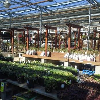 The Home Depot Nurseries Gardening Milpitas Ca Yelp