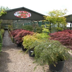 Collyers Nurseries, Derby