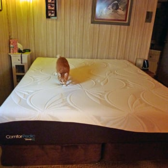 dog prison training program ohio