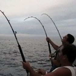 Reward 6 pack sport fishing charters yelp for San diego fishing guides