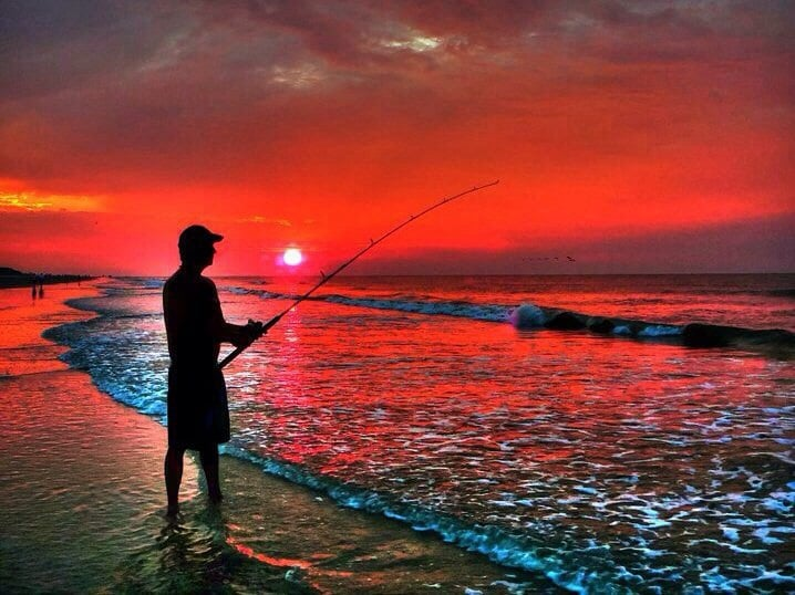 Forest beach beaches hilton head island sc yelp for Hilton head surf fishing