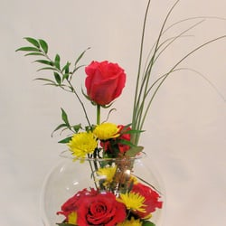 Florists Chevy Chase Md