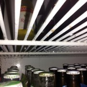 Plaka Restaurant - Mold in the beer cooler. - Tarpon Springs, FL, Vereinigte Staaten