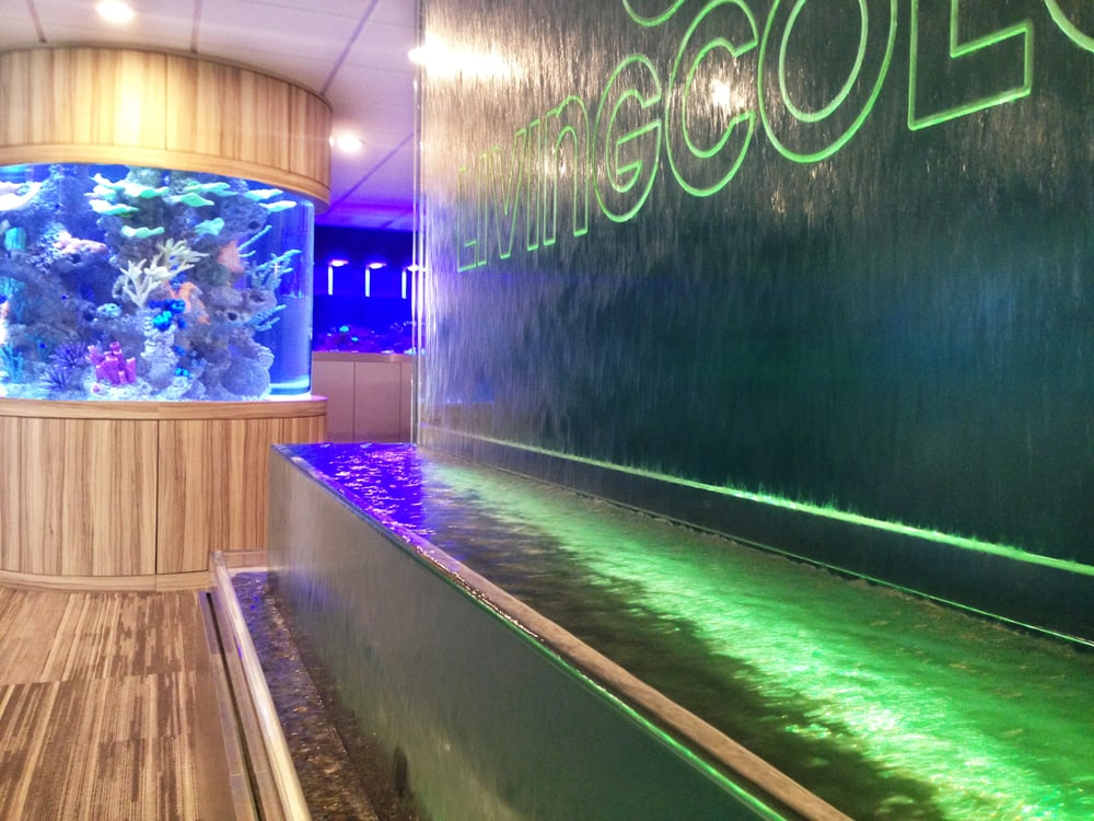 Water Feature At Our New Showroom Yelp