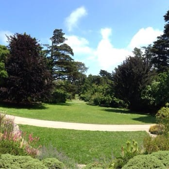 San Francisco Botanical Garden 916 Photos Botanical Gardens San Francisco Ca Reviews Yelp