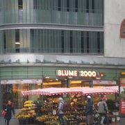 Blume 2000, Hamburg