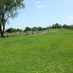 Schweitzer Woods Dog Park - West Dundee, IL, Vereinigte Staaten