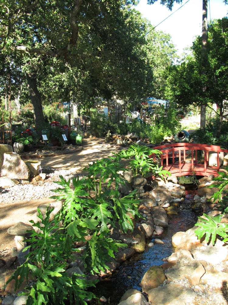 Hill country water gardens : 2018 Discounts