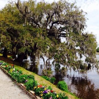 Magnolia Plantation Gardens 259 Photos Botanical Gardens 3550 Ashley River Rd