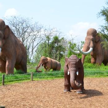 Dinosaur World 60 Photos 38 Reviews Museums 711