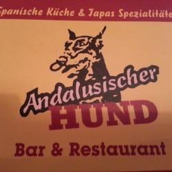 Andalusischer Hund, Fürth, Bayern, Germany